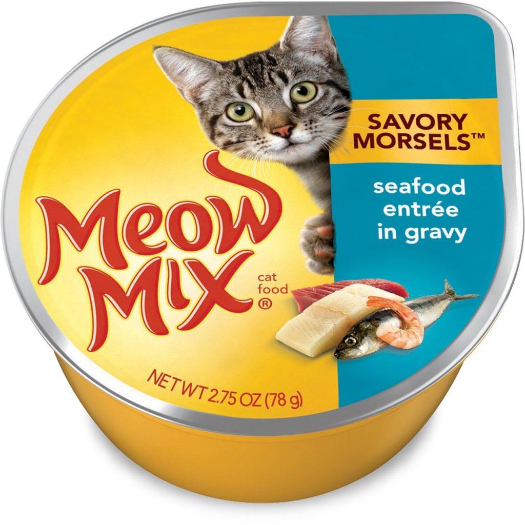 best cat food for senior cats,