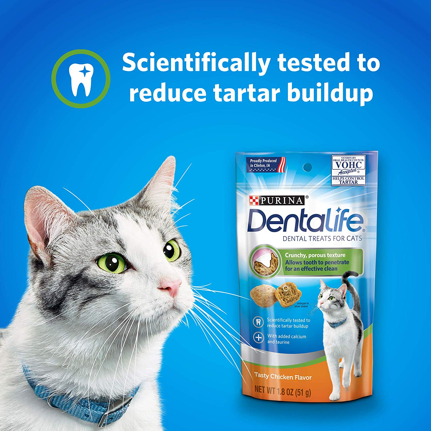 best cat food for senior cats,