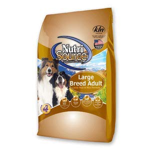 best food for small dogs
