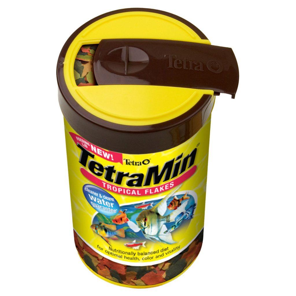 best food for betta fish,